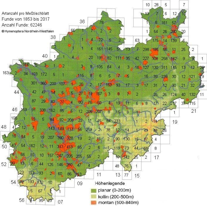 Anzahl Arten Wildbienen und Wespen je Meßtischblatt (Stand April 2017)