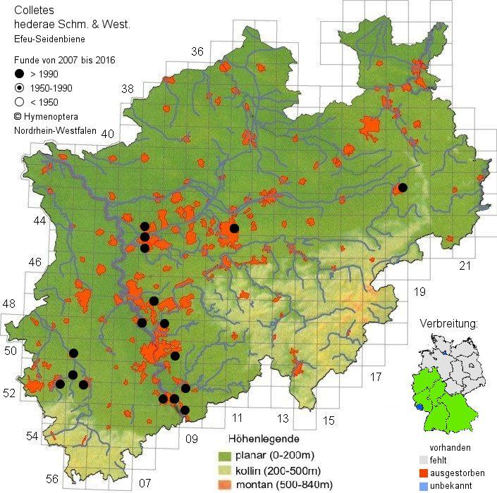 Ausbreitung der Efeu-Seidenbiene in NRW seit dem Erstnachweis 2007